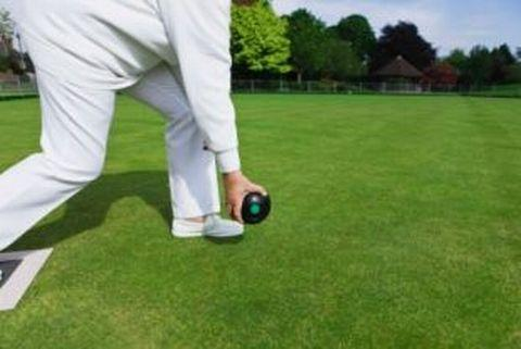 BOWLS: Badgers shoot down Optimists at Wellington