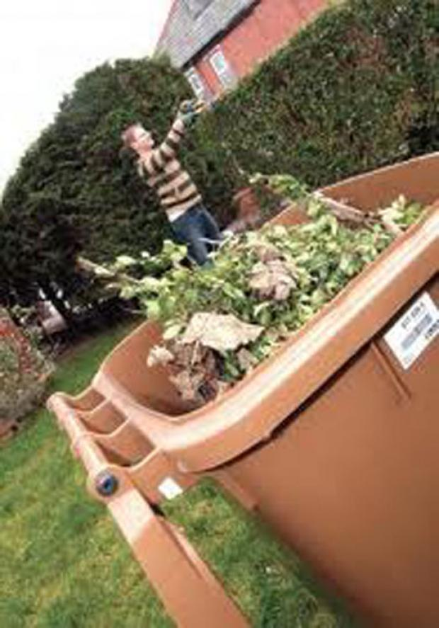 This is The West Country: Garden waste advice for Sedgemoor homeowners