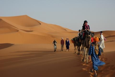 Students enjoy a camel trek in the Sahara Desert. Photo:submitted