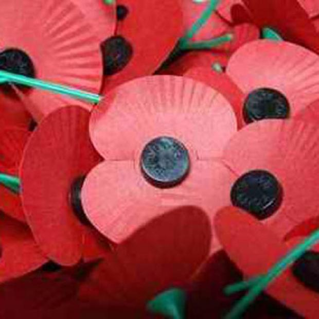 Somerset's Poppy Appeal needs your help
