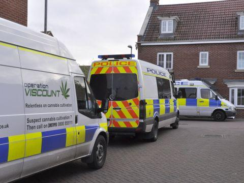 Cannabis plants recovered following Burnham drugs raid