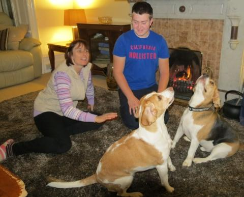 Beagles Tucker and Ellie relax in front of the fire with their owners.