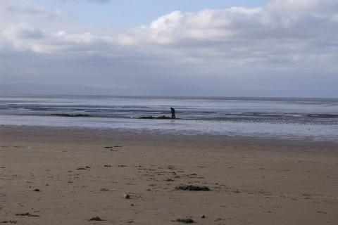 Volunteers needed for Berrow Beach clean-up