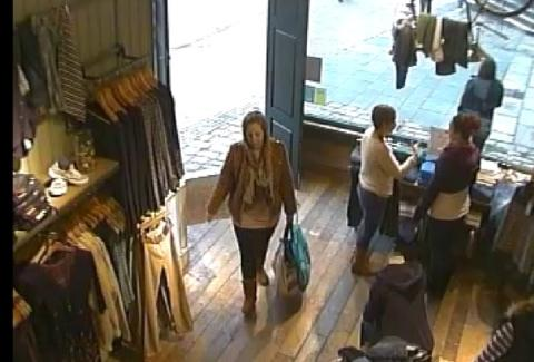 The woman police are hoping to identify in connection with the incident.