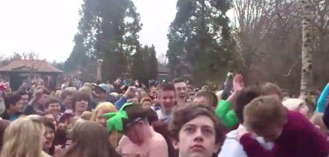 Video: Hundreds perform Harlem Shake dance craze in Vivary Park, Taunton