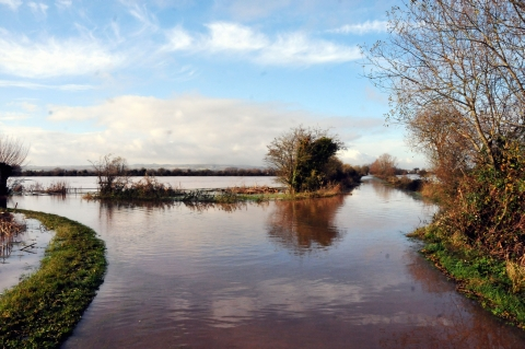 Nether Stowey hotel pub offers rooms to flood hit families