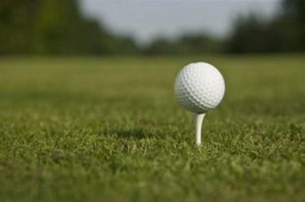 GOLF: Robinson leads the field for Hangover Trophy