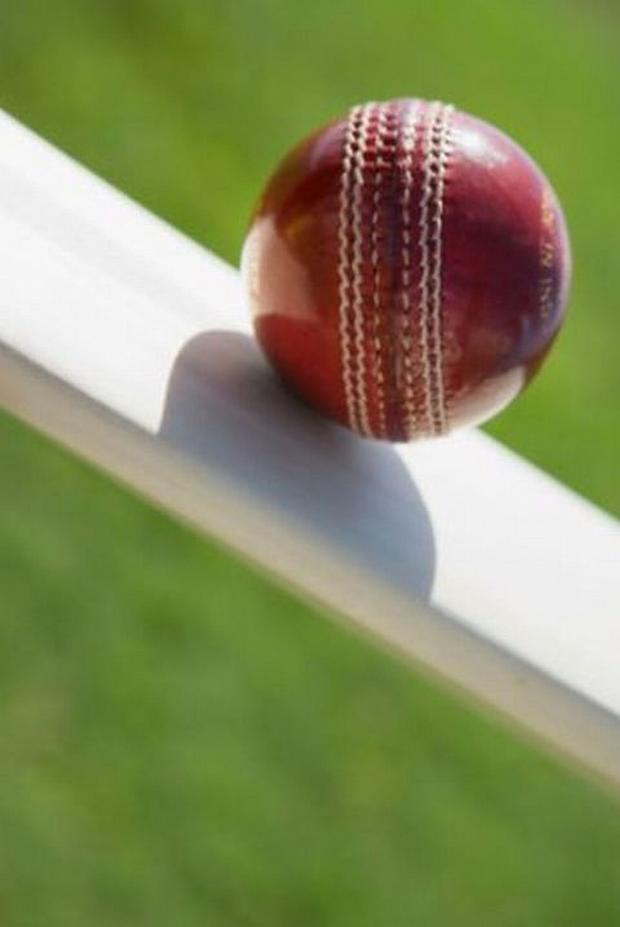 CRICKET: George in running for national coaching award