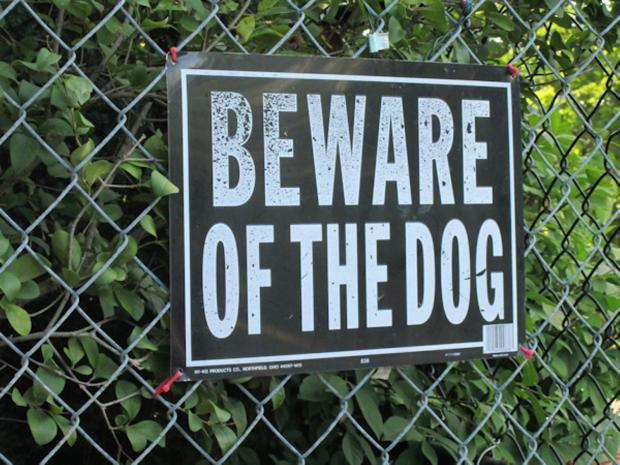 Should dog owners face jail if their pet attacks? POLL