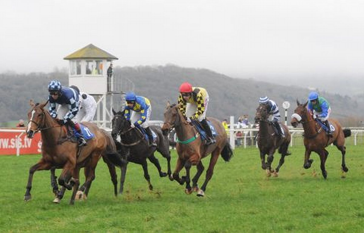 HORSE RACING: Taunton kick off Cheltenham week