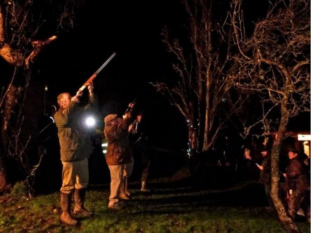 SHOTGUNS will be fired as part of the ancient tradition at the Wassail. PHOTO: Maureen Harvey.
