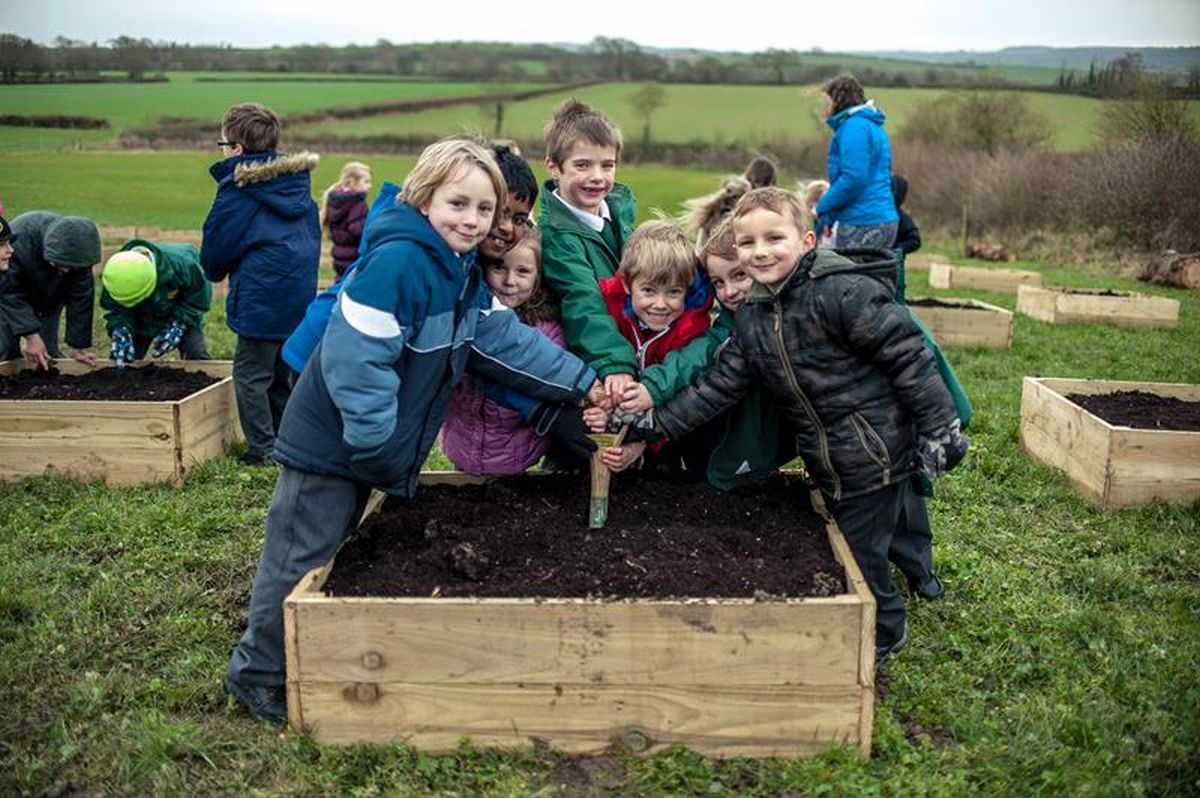 The children from Stogursey Primary School enjoying their new allotments