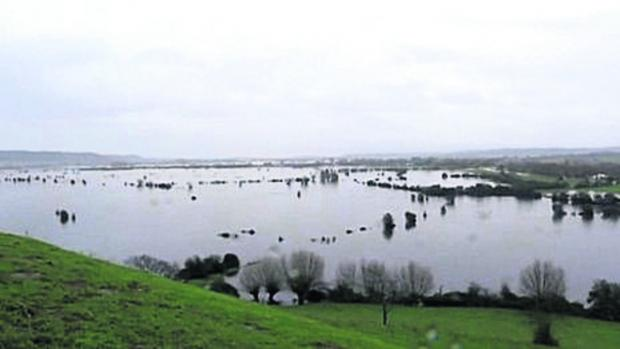 The farming community on the Somerset Levels has been badly affected by the floods.