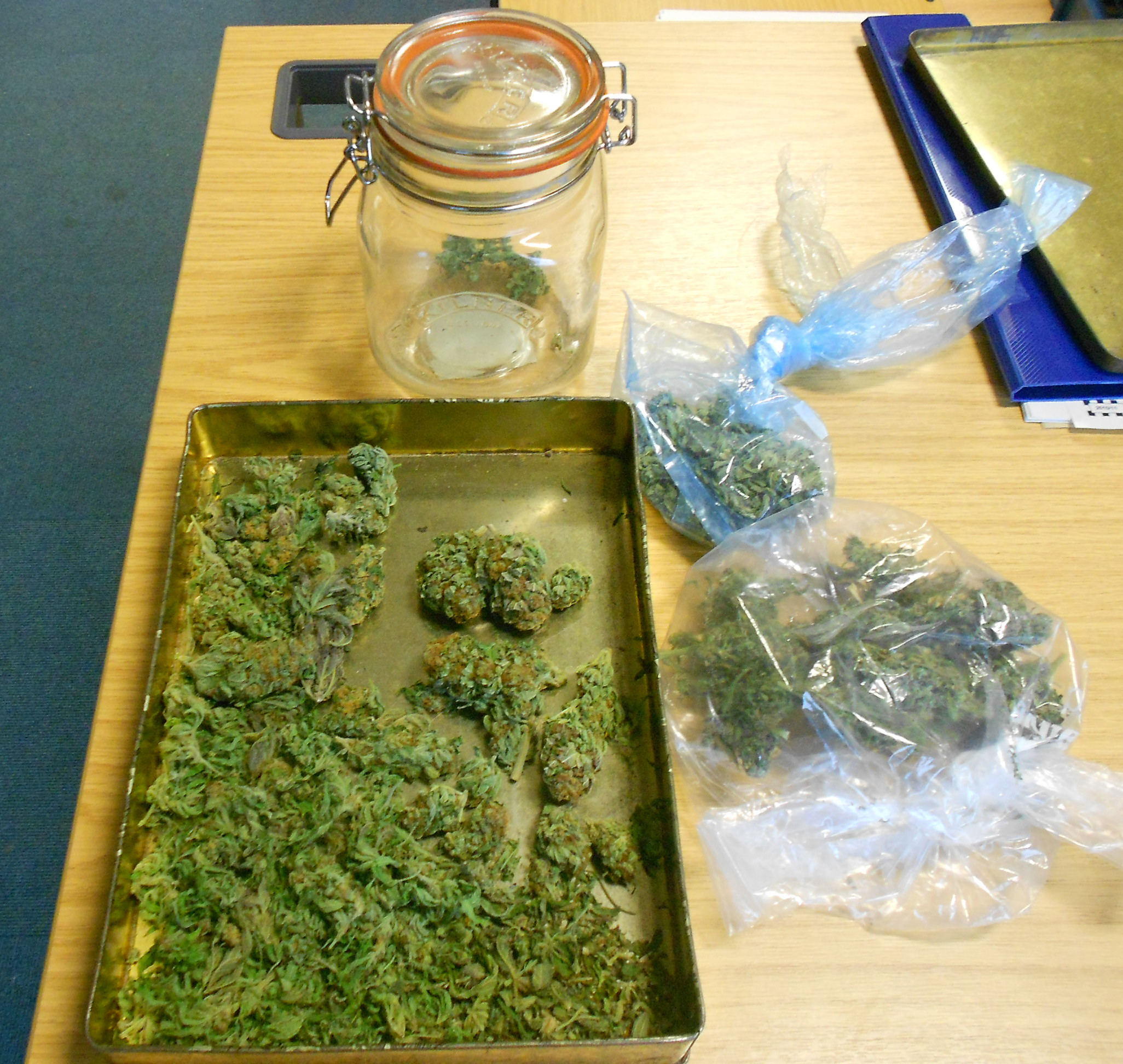 The suspected cannabis recovered by Bridgwate