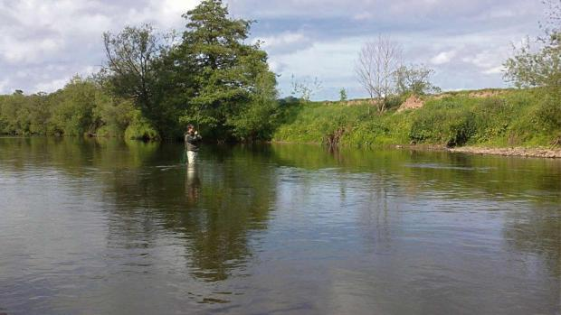 This is The West Country: FISHING: Wessex report