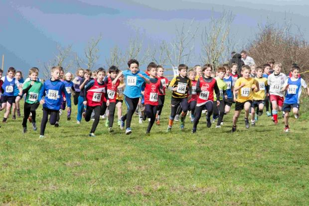 300 children race in annual Coose Trannack cross country run: PICTURES