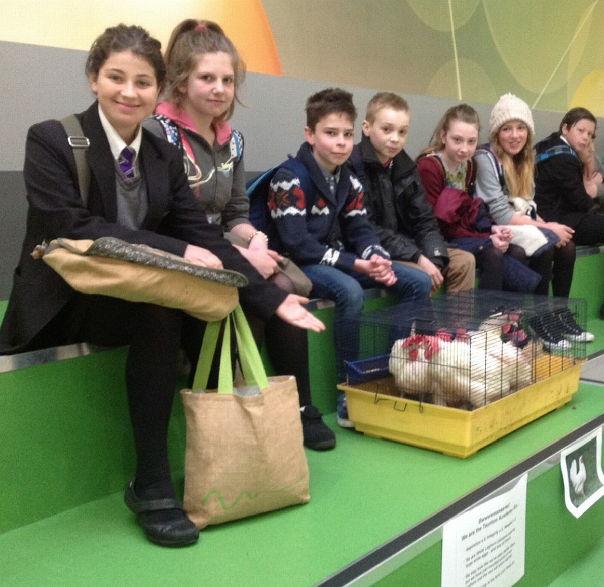 Students with some of the chickens.