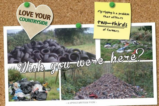One thousand tyres and 100 gin bottles: Cornish farmer join campaign to tackle flytipping
