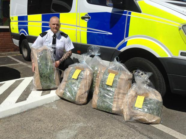 PC Tony Freeman, beat manager for Wembdon and Durleigh, with the haul of suspected cannabis