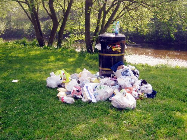 Mayor urges people of Tiverton to keep the town tidy