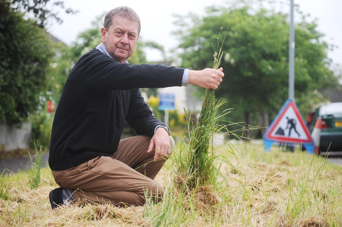 Stan Turner highlights the state of the grass verges by his home in Galmington.