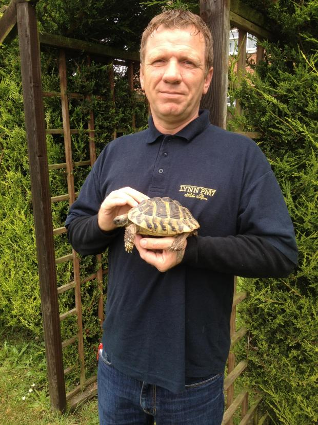 This is The West Country: Tortoise takes a grand tour