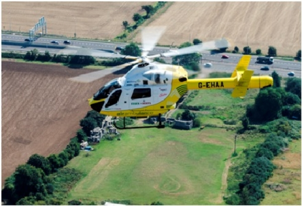 A man was airlifted to Musgrove Hospital after colliding with a tree