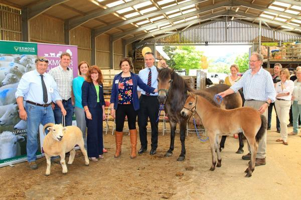 LAUNCH host Oliver Edwards, chairman of the Network Dave Knight, Helen Aldis from The Prince's Countryside Fund, chairman of the ENPA Andrea Davis, Katherine Williams from the Network, Lord de Mauley and owner of the Exmoor Ponies Peter Farmer. Submitted.