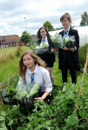 Pupils grow their own food at Cullompton Community College