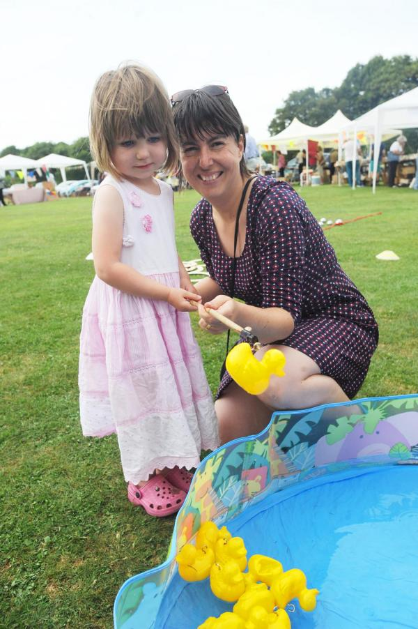 PHOTOS: Record total raised at Fitzhead Fete and Flower Show
