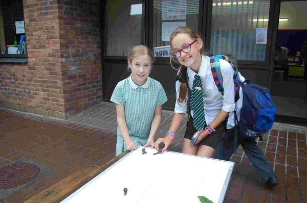 St Francis pupils raise funds at summer fair: PICTURES