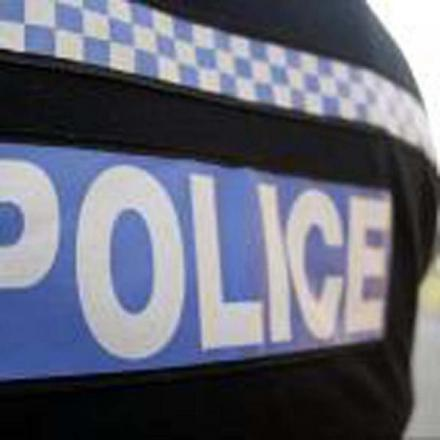Police appeal after sex attacker targets girl, 13, in Taunton
