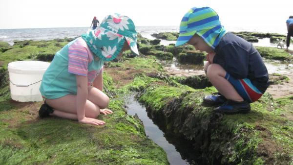 Photo: Amelia (5) and Zak (3) exploring riveted by a rockpool.