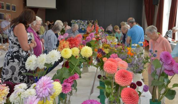In Pictures: Minehead Flower Show and results