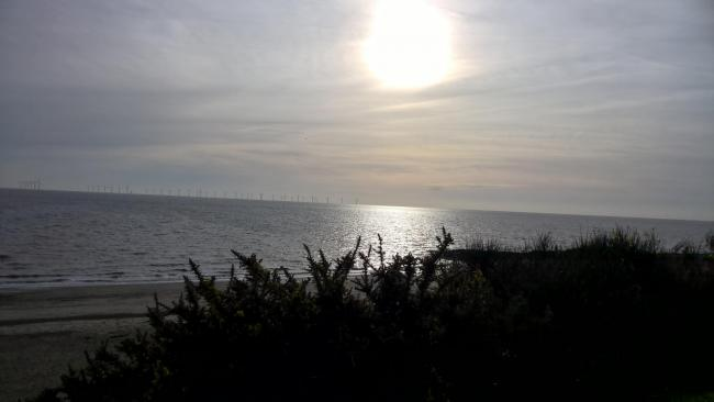SUN: IT's going to be a lovely sunny day across Devon