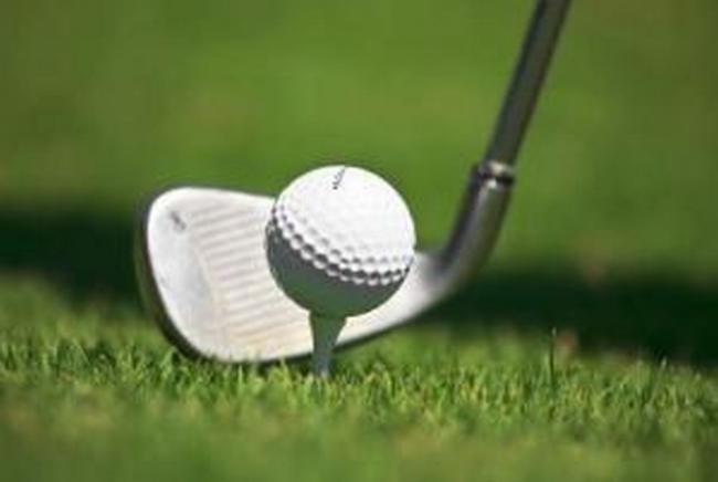 GOLF: Watts wins November Stableford at Padbrook Park