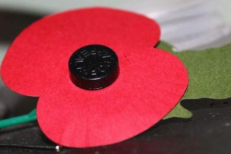 'Support the armed forces and wear your poppies with pride' says council chairman
