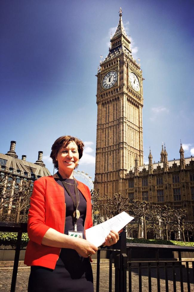 THOUGHTS: Rebecca Pow, MP for Taunton Deane