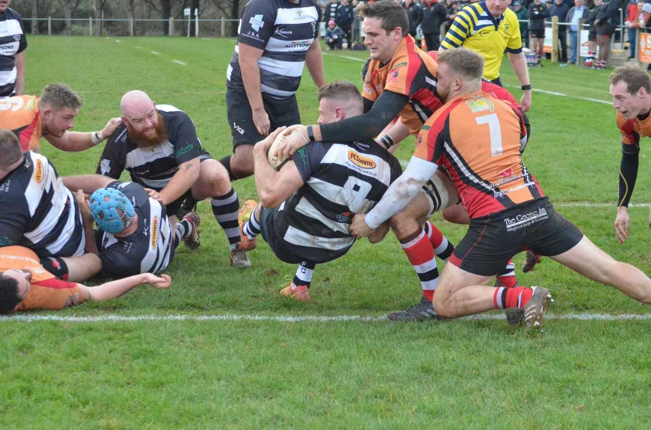 PUSHOVER: James Taylor backs over the line to score for North Petherton against Lydney. Pic: Chris Hancock